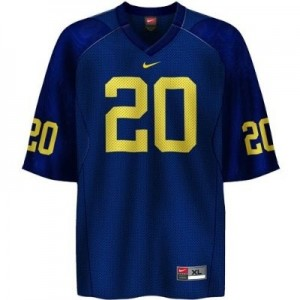 Mike Hart Michigan Wolverines #20 Youth Football Jersey - Navy Blue